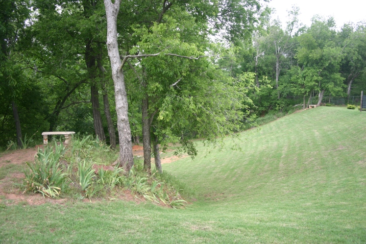 The wretched slope that drops off behind our house, down to the canyon into Daisy's world. It has to be push-mowed about two thirds from the top.