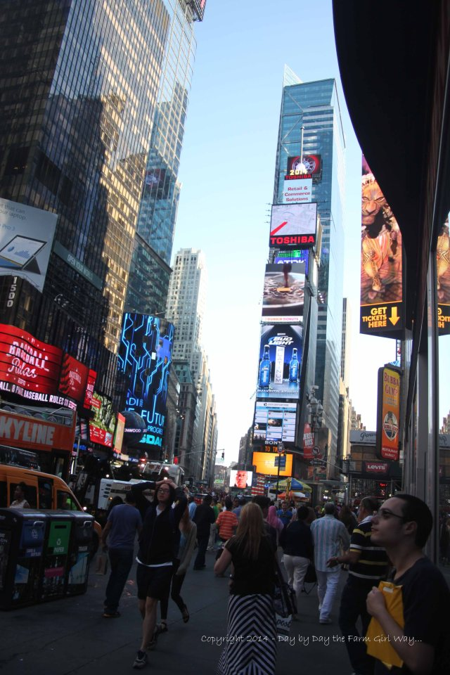 Times Square was also near our hotel. Just about every day we walked through this busy, and very crowded area. Even though it's crowded, annoyingly noisy and chaotic, it is an experience people shouldn't miss! It's the true vibration of the city!