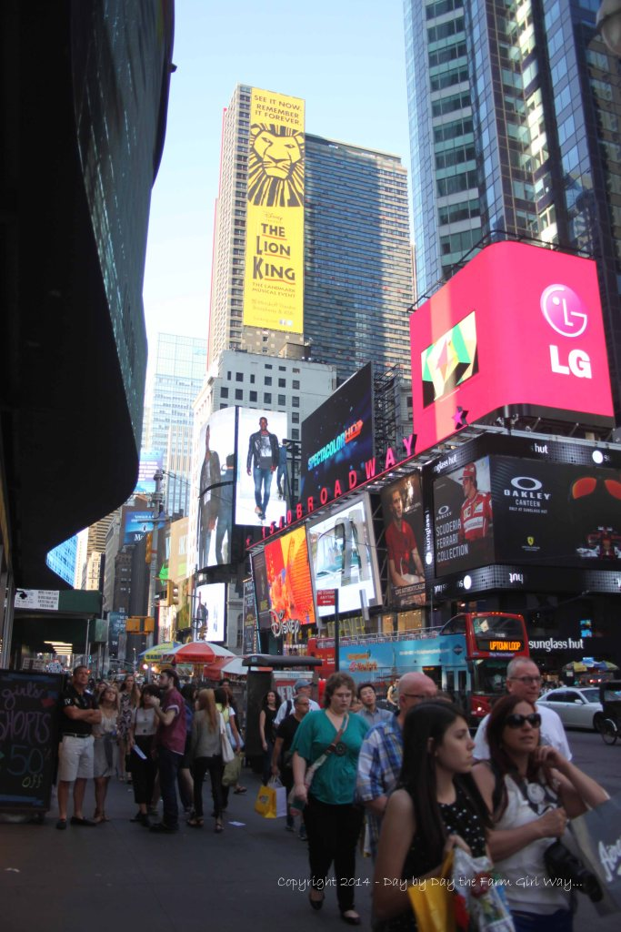 Another view of exciting Times Square.