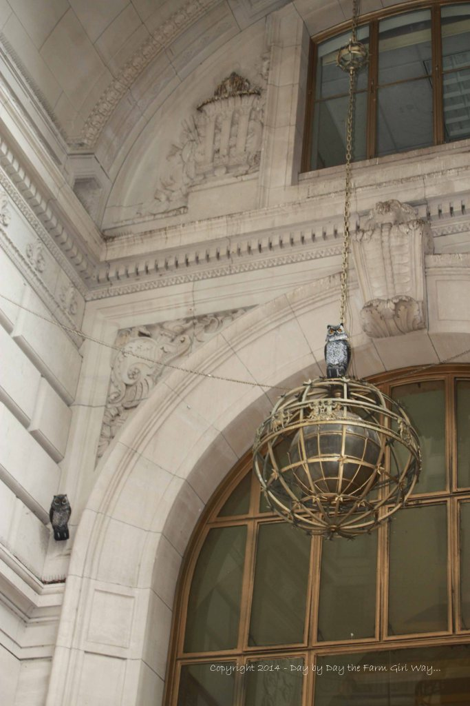 I found this interesting! Apparently there is a bird problem in the Financial District in Lower Manhattan. In many tall archways, fake owls (not unlike my bobble head Mr. Owl here on our little ranch) adorned the entryways to scare off smaller birds. This particular entryway also had a screeching owl noise emitting from speakers every few seconds. I did not see any nests or bird droppings so this clever idea must work!