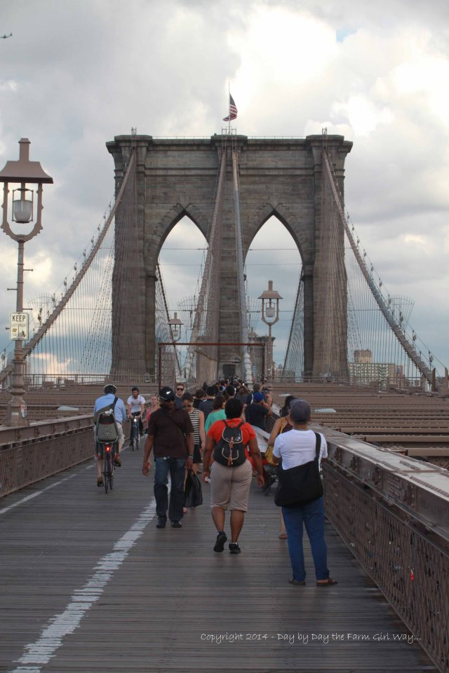 I feel it is a must to walk the Brooklyn Bridge on a trip to NYC. The view of Manhattan is like no other - perhaps just a different perspective than a view from a high point. Pedestrian and Bicycle traffic is heavy much of the time and is frustrating to find a good photography point, but the experience is unique!