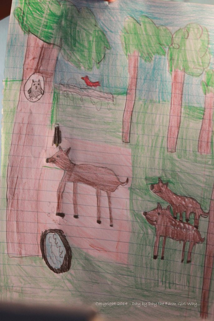 Riley Jo drew this the very first day she arrived. She and great-grandma had spotted Daisy with her twins down at the feeder and water tub.