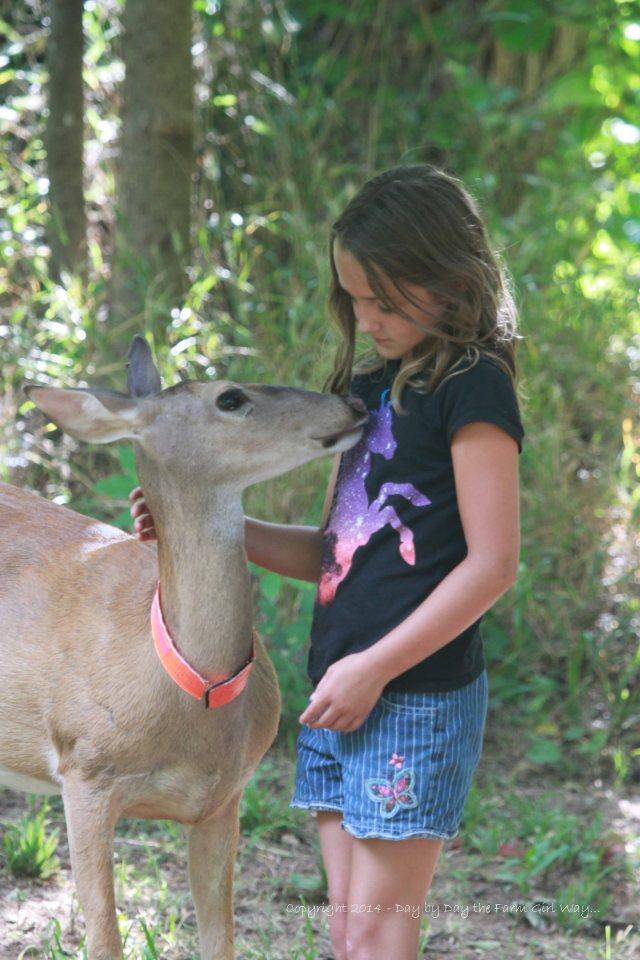 Daisy was very interested in the unicorn on Riley Jo's shirt!