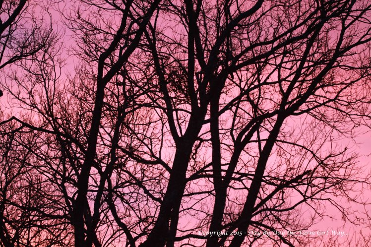 Just a minute later the western sky was bathed in a lovely shade of pink!