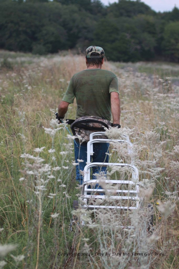 The trek back across the dam was not so difficult - we'd knocked down some of the weeds the first time across.
