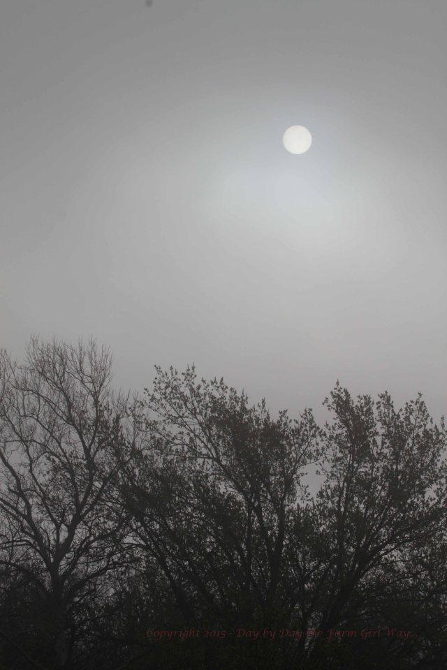 The sun peeks through a dismal sky.