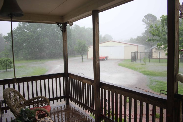 In five days we received 6.75 inches of rain. I do not think I have ever seen the driveway flooded!