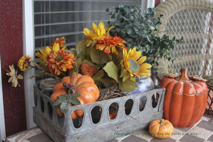 I reuse and repurpose a lot of items. The metal container was part of an old incubator found in the poultry barn. The flowers were worn out freebies from a neighbor, and the little ceramic pumpkins cost me $1 at a garage sale. This autumn display sits on the front porch table.