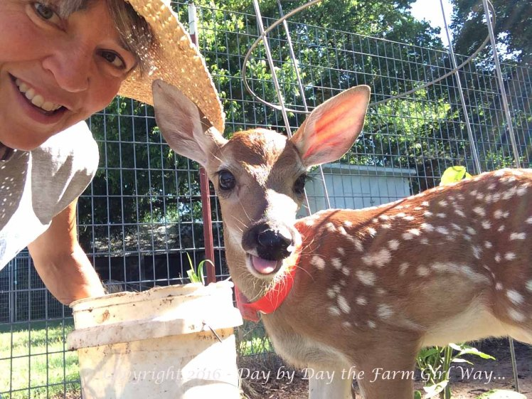 """A selfie to show how """"in my face"""" Emma is in the garden. She is really not much help at all with weeding!"""