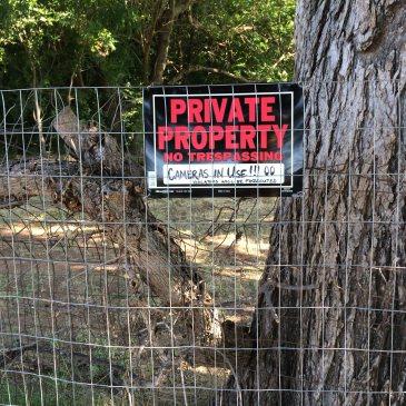 Little Elm Property Tax