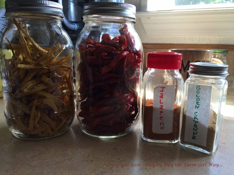 I dry my own peppers and powder them for seasoning. I come up with some interesting spice blends some years!