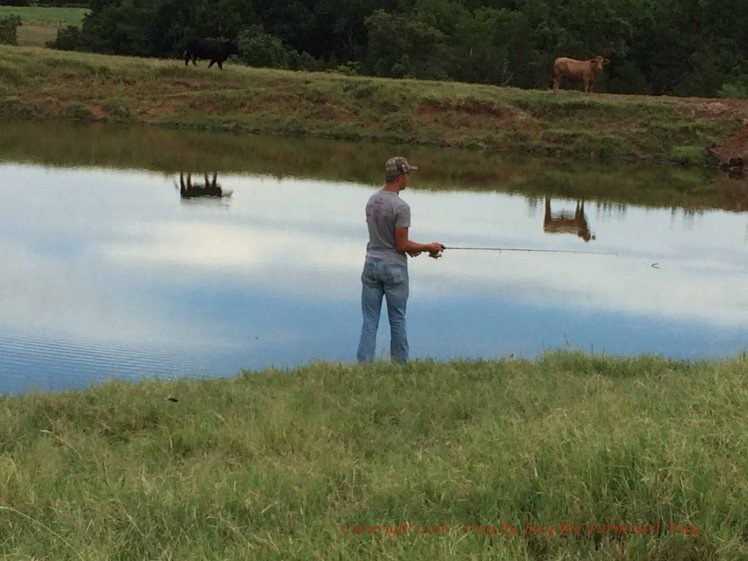 Sid preferred to fish the dam area of the farm pond.