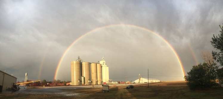 The day of Zach's death and in the days after, rainbows were spotted, even when there was no rain! Photograph courtesy of my niece Emily.